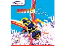 Spinlord Dornenglanz
